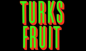 Turks Fruit - Jan Wolkers - Spelling & Zo Boekrecensie