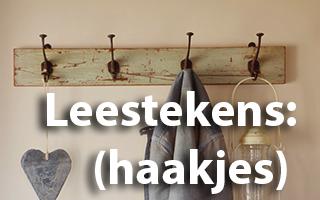 Leestekens Haakjes - Spelling & Zo