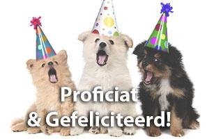 Taalgebruik - Verschil Proficiat en Gefeliciteerd - Spelling & Zo